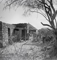 ETH-BIB-Abessinisches Dorf-Abessinienflug 1934-LBS MH02-22-0747.tif