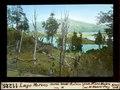 ETH-BIB-Lago Moreno, durch Wald-Ruinen von Norden-Dia 247-11225.tif