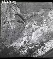 East Rim Trail reconstruction, lower section, view of Observation Point. ; ZION Museum and Archives Image 008 02 015 ; ZION 7644 (1f87648c71364267a0134d1f29dd15fc).jpg