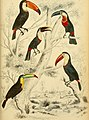 Edinburgh journal of natural history and of the physical sciences (1839) (21173936461).jpg