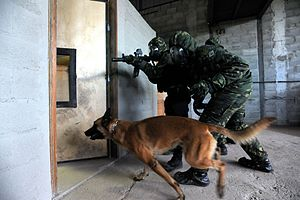 CBRN defense - Special Forces training for chemical warfare.