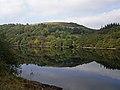 Elan Valley - Penygarreg (21922500188).jpg