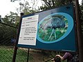 Emu info board from Bannerghatta National Park 8704.JPG