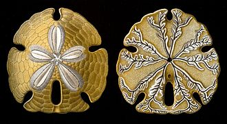 Sand dollar - Encope emarginata (aboral and oral faces) by Ernst Haeckel (1904)