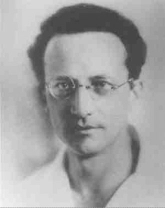 Erwin Schrödinger - Erwin Schrödinger as a young scientist