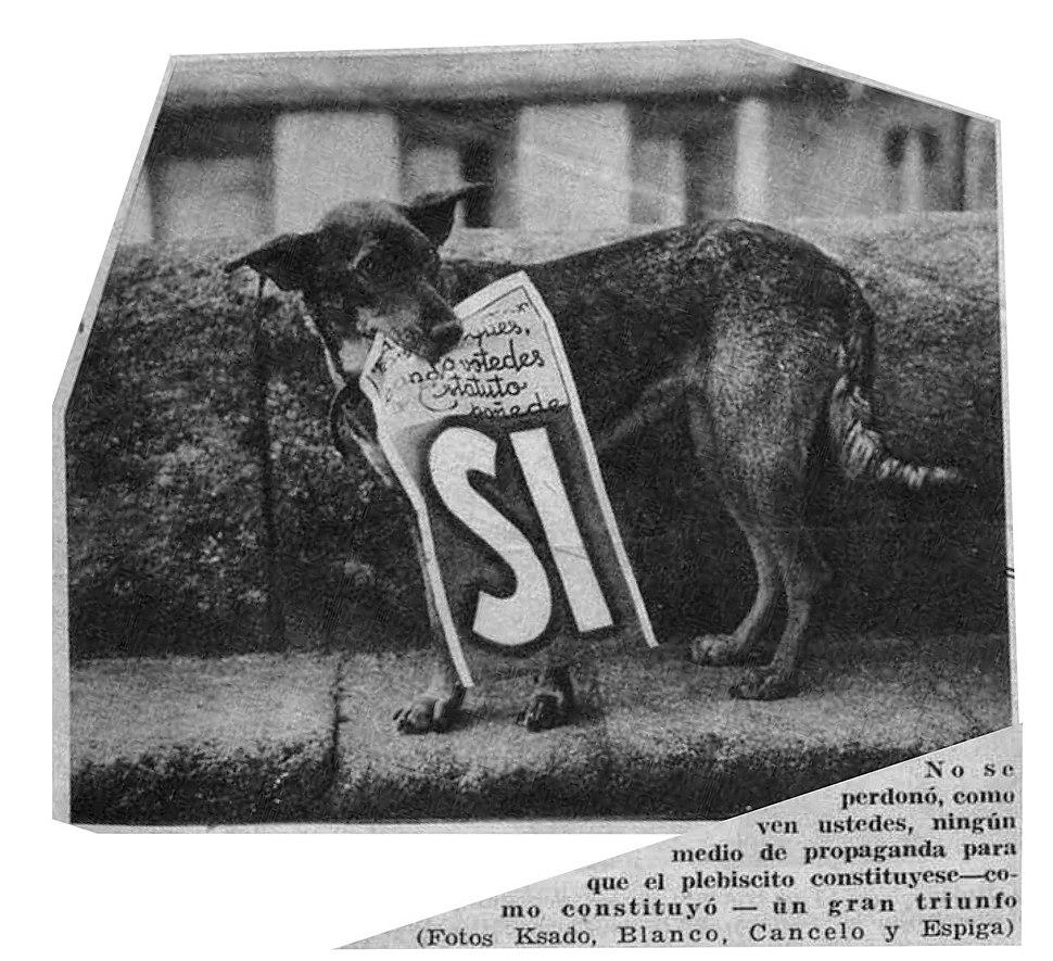 EstatutoGaliza1936-Can