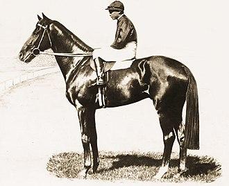 Eurythmic (horse) - Image: Eurythmic (AUS)