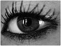 Eye make-up (mascara).jpg