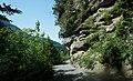 Fahrweg einspurig Nenzinger Himmel (1367 m ü.M.) durch das Gamperdonatal nach Nenzing, Vorarlberg DSC09799.jpg