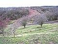 Farm track across ravine, near Embleton - geograph.org.uk - 344685.jpg