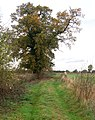 Farm track north of Harbury - geograph.org.uk - 1550619.jpg