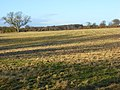 Farmland, Rotherfield Greys - geograph.org.uk - 626548.jpg
