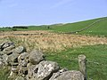Farmland - geograph.org.uk - 419214.jpg