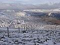Fenceposts, Ben Chonzie - geograph.org.uk - 325190.jpg