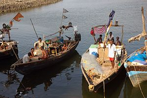 Fishing in India - Fishermen of Maharashtra in their boats