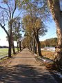 Flickr - Per Ola Wiberg ~ mostly away - Ekebyhovsallen.jpg