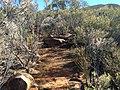 Flinders Ranges SA 5434, Australia - panoramio (157).jpg