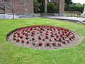 Flowerbed at Upton Library - IMG 0549.JPG