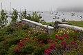Foggy Rockport Harbor (35972773006).jpg