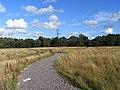 Footpath, Ufton Nervet - geograph.org.uk - 1560601.jpg