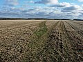 Footpath across field - geograph.org.uk - 1055803.jpg