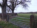 Footpath east of Hollybush Lane - geograph.org.uk - 628337.jpg