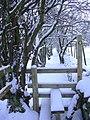 Footpath from Grane Road - geograph.org.uk - 1633273.jpg