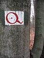 Footpath signs in Dresdner Heide 04.jpg