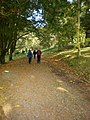 Footpath through Rydal Park - geograph.org.uk - 1544770.jpg