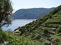 Footpath to Vernazza - panoramio.jpg