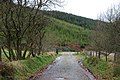 Forestry entrance - geograph.org.uk - 1067080.jpg