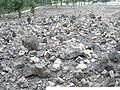 Former extermination camp Belzec (august 2007).jpg