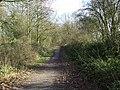 Former railway line - geograph.org.uk - 1138390.jpg