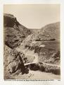 Fotografi från bergen i Libanon - Hallwylska museet - 104292.tif