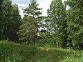 G. Miass, Chelyabinskaya oblast', Russia - panoramio (53).jpg