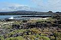 Galápagos Inseln, Ecuador (13894025246).jpg