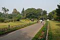 Garden - Agri-Horticultural Society of India - Alipore - Kolkata 2013-01-05 2116.JPG
