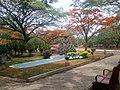 Garden infront of Administrative Block , SJCE - panoramio.jpg