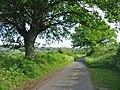 Gascoigne's Lane, near Shaftesbury, Dorset. - geograph.org.uk - 440470.jpg