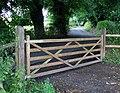 Gate, Minnowburn Path - geograph.org.uk - 1407367.jpg