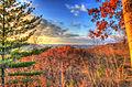 Gfp-wisconsin-wildcat-mountain-forest-overlook-near-dusk.jpg