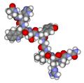 Gonadotropin releasing hormone3d.png