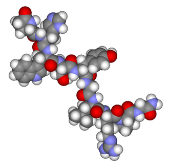 Gonadotropin - gonadotropin-releasing hormone
