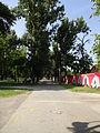 Gradski Park-Skopje (131).JPG