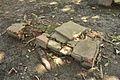 Grave - Dutch Cemetery - Chinsurah - Hooghly 2017-05-14 8422.JPG