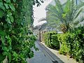 Green Alleys old Nicosia Republic of Cyprus.jpg