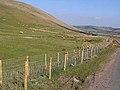 Green Side - geograph.org.uk - 1264174.jpg