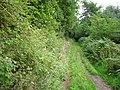 Green lane, Sled Hill - geograph.org.uk - 226347.jpg