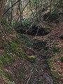 Grotta lungo il rio presso Buca della Volpe - panoramio.jpg