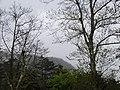 Guanwu 觀霧 - panoramio (2).jpg